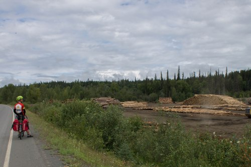One of the only active logging sites along the highway.
